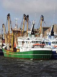 Los precios del Transporte marítimo de mercancías registran una bajada en tasa anual, de 1,7 puntos, hasta el 3,0%