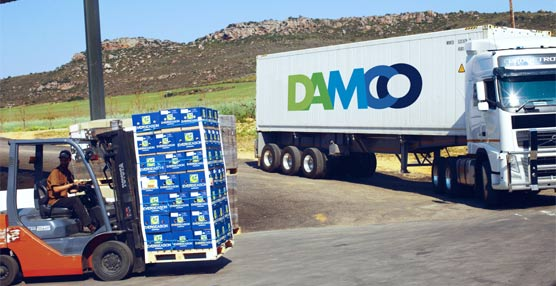 La mexicana HEB premia a Damco como