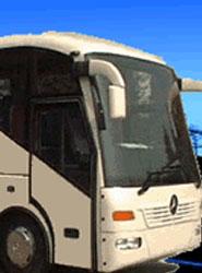 Transaval facilita avales para concursos de líneas regulares dependientes del Ministerio de Fomento, señala Fenebús