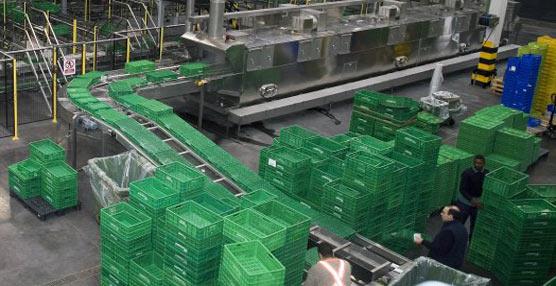 Logifruit, proveedora de Mercadona, mejora su eficiencia en 2012 'gracias a la inversión de más de 5 millones de euros'