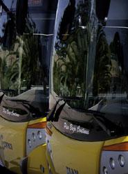 Las matriculaciones de autobuses de más de 3,5 toneladas crecieron un 3,9% en enero.