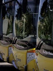 La CNC insta a los ayuntamientos a privatizar servicios como el transporte urbano de viajeros