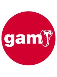 GAM ha celebrado su sexto aniversario trabajando en el mercado de varios países de Europa del Este