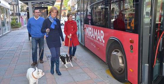 La alcaldesa de Fuengirola, Esperanza Oña, acompañada de la edil de Sanidad, Carmen Díaz, y del concejal de Seguridad Ciudadana, Rodrigo Romero.