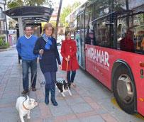 El Ayuntamiento de Fuengirola ha dado 'luz verde' al acceso de perros en los autobuses urbanos