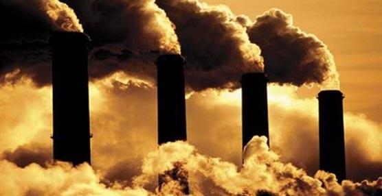 Agricultura acepta 49 propuestasanti-CO2 como finalistasen la segunda convocatoria del Proyecto Clima