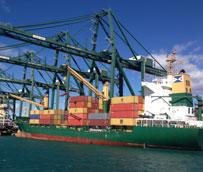 El Grupo Moldtrans amplía su división de transporte marítimo, aéreo y de aduanas con la incorporación de nuevos profesionales