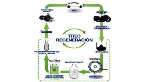 Michelin, CEA, Protéus y SDTech desarrollarán dos innovadoras vías para valorizar neumáticos usados