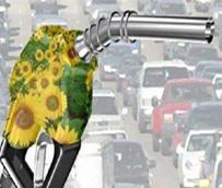 La Unión Europea da los primeros pasos hacia una política restrictiva sobre biocombustibles en favor de los alternativos