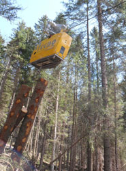 ITENE participa en un proyecto que busca optimizar la logística forestal en las zonas de montaña