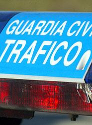 Las policías de Navarra inician una campaña de tráfico centrada en la seguridad de los peatones