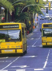 El autobús concentró el 54% del volumen de negocio sectorial en 2014.