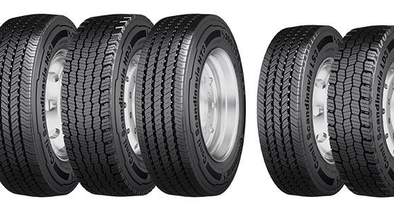 Sin riesgos con los neumáticos de invierno para camiones y autobuses quepresentaContinental