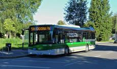 La flota de autobuses de Boreal Norge contará con cinco nuevos vehículos Urbino 12, de Solaris