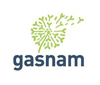 El gas natural, la alternativa clave para el transporte de mercancías