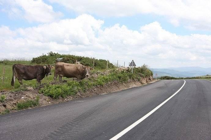 La Xunta inicia las obras de refuerzo del firme en varios trechos de las carreteras O-504, O-536 y O-901, con el fin de incrementar su seguridad