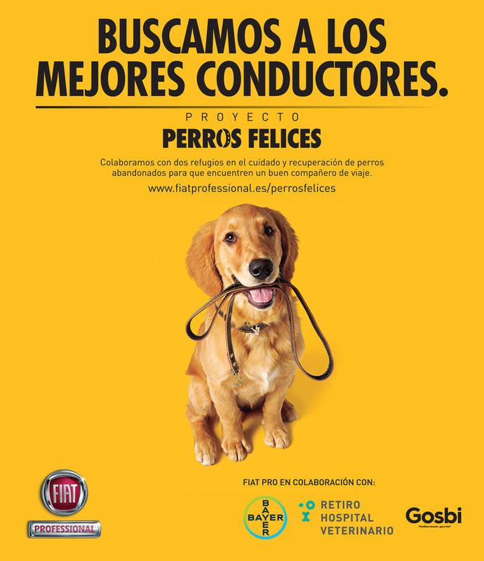 Fiat Professional da bienvenida a Gosbi, ayudante proyecto Perros Felices