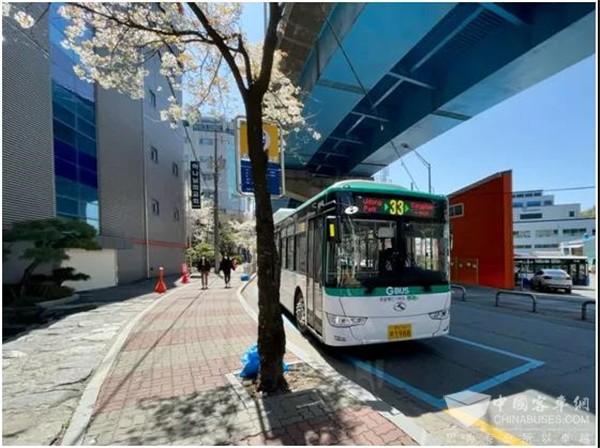 Los autobuses eléctricos King Long ganan popularidad en Corea del Sur