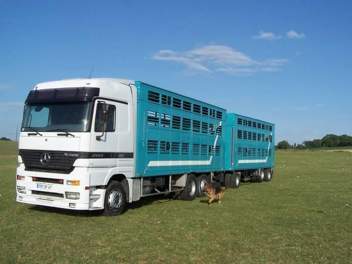 Asociación argentina propone aumentar carga para camiones en el país