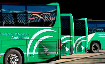 Fandabus presenta sus propuestas para las Autonómicas andaluzas