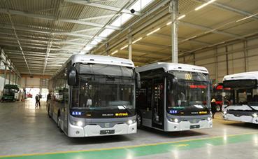 Ebusco entregará 156 autobuses eléctricos en Países Bajos