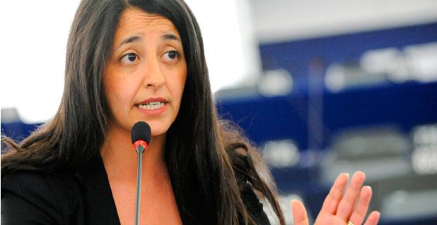 Delli preside la Comisión de Transportes del Parlamento europeo