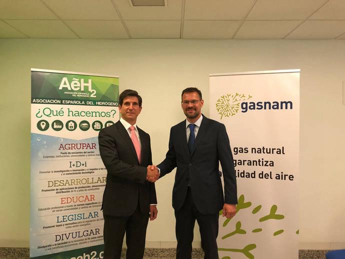 Gasnam y la Asociación del Hidrógeno, aliadas