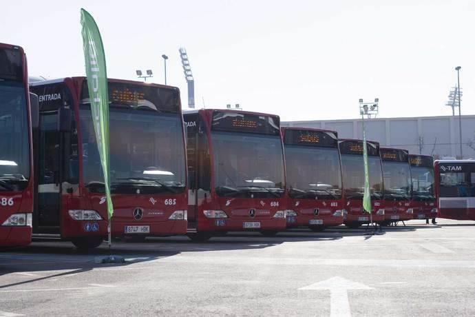 Alicante afronta el fin de la concesión de Masatusa, que será en 2019