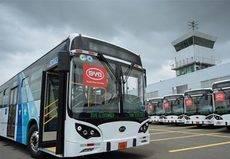 Primera flota de eléctricos BYD en Ecuador