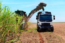 Camión Volvo recogiendo caña de azúcar en Brasil