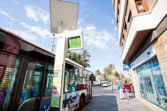 Las nuevas paradas de Alicante están alimentadas únicamente por energía solar.