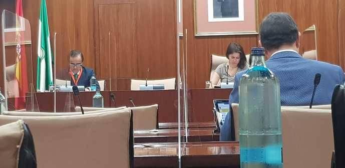 Fandabus comparece en el Parlamento andaluz