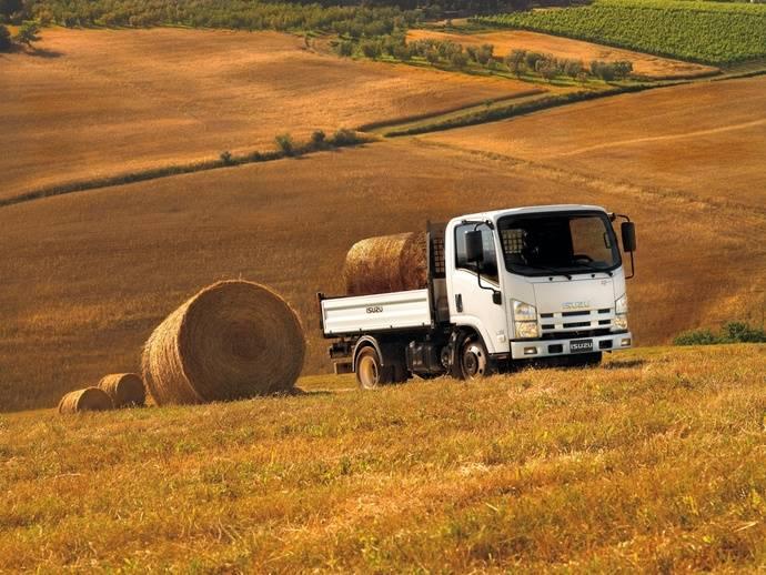 Fenadismer advierte de las consecuencias de no utilizar Adblue en camiones