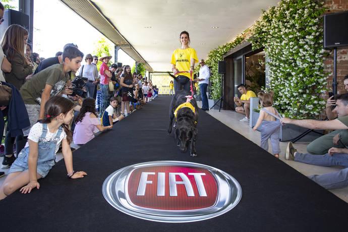 Fiat Professional muestra que en verano se puede disfrutar mascotas