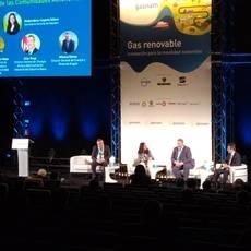 Mesa redonda: 'La visión de las Comunidades Autónomas españolas sobre la implantación del gas renovable'.