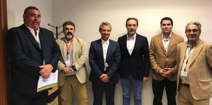 Fedintra pide concursos abiertos donde se fomente sostenibilidad y eficiencia
