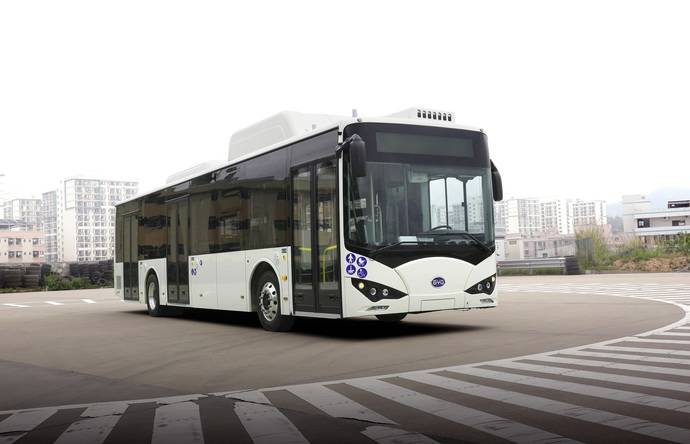 Turín incorpora cuatro buses más BYD puro eléctricos