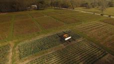 UPS prueba la entrega a domicilio con drones