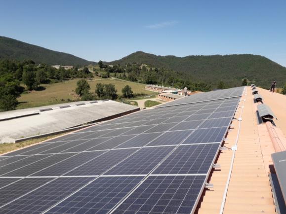 Grupo Noria lanza una apuesta firme por las energías renovables