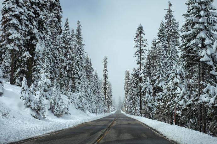 Las gamas de neumáticos Goodyear para autobús cumplen con la legislación de invierno más exigente en Europa