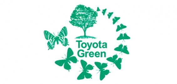 Adjudicadas las becas Toyota para actividades medioambientales