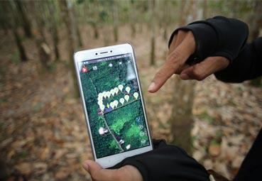 Logran una cadena de suministro de caucho, sostenible y rastreable digitalmente