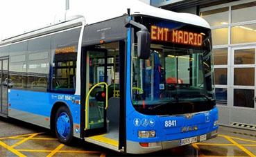 El transporte en autobús de Madrid pide ayudas urgentes