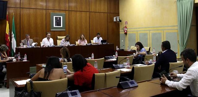 Comisión parlamentaria de Andalucía.