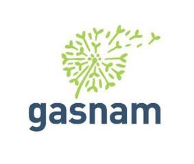 Gasnam lanza un Grupo de trabajo sobre hidrógeno