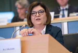 Los eurodiputados de Transporte y Turismo interrogaron a Adin Vălean