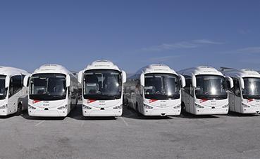 Grupo Paco Pepe pone en marcha el concurso escolar 'Diviértete en Bus'