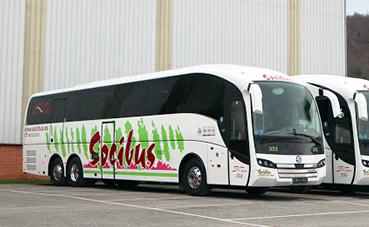 Socibus retoma en julio las conexiones por carretera