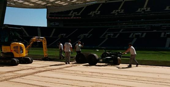 Primafrio transporta el nuevo césped para el FC Porto