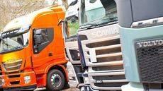 'Se están adoptando medidas tendentes a incrementar el sacrificio de los conductores'